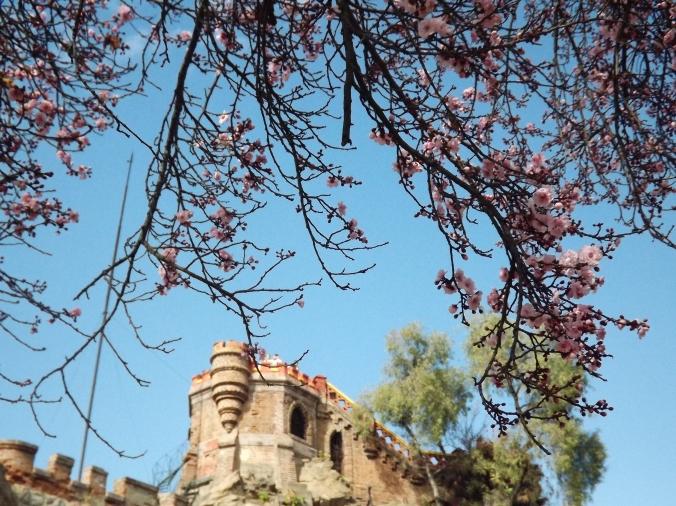 cerro santa lucia (4)