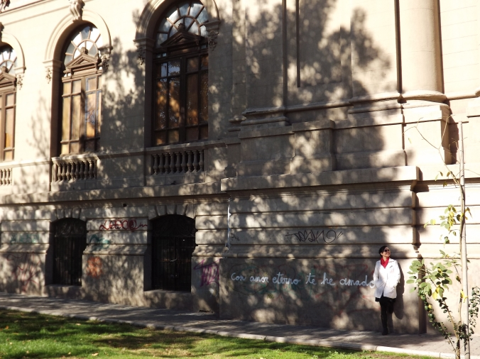 museo bellas artes e parque forestal (2)