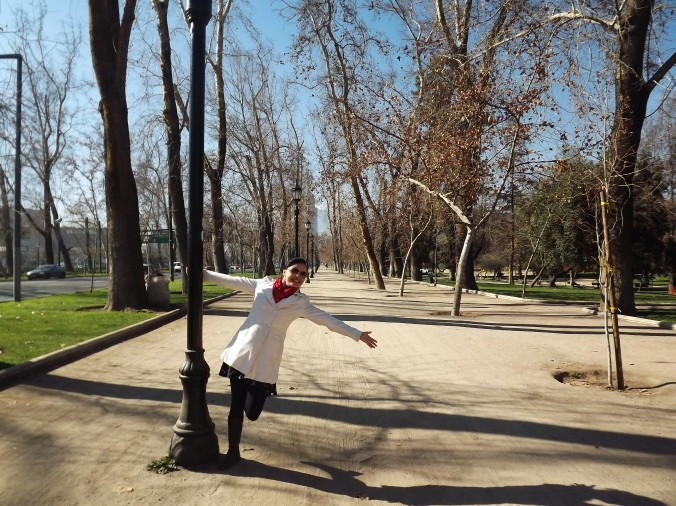 museo bellas artes e parque forestal (4)